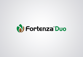 Fortenza Duo